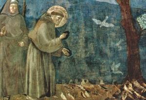 francis_assisi_sermon_birds